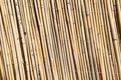 tła bambusowa use ściana Fotografia Royalty Free