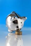 tła banka błękitny monet świniowaty obwąchanie Zdjęcia Stock
