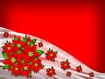 tła bożych narodzeń kwiatu poinsecja Obraz Royalty Free