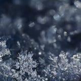 tła bożych narodzeń zamknięty odosobniony płatek śniegu w górę biel obraz stock