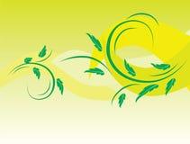 tła botaniczni zieleni liść royalty ilustracja