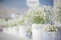 tła boutonniere karty wystroju dekoraci zaproszenia perły róże target2134_1_ biel Obraz Stock