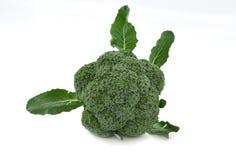 tła brokułów świeży biel Zdjęcie Stock