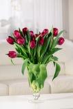tła bukieta menchii tulipany biały Zdjęcie Stock
