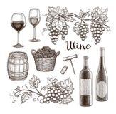 tła butelki eleganccy szkła odizolowywali czerwonego ustalonego biały wino Obraz Stock