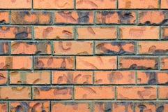 tła ceglanej czerwieni ściana Fotografia Stock