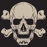 tła crossbones ludzki ilustracyjny czaszki biel ilustracji