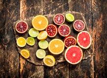 tła cytrus przygotowywający tekst Świeża cytrus owoc Na tnącej desce Fotografia Royalty Free