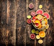 tła cytrus przygotowywający tekst Świeże cytrus owoc w starym wiadrze Obrazy Stock