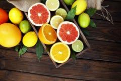 tła cytrus przygotowywający tekst Asortowana świeża cytrus owoc Cytryna, pomarańczowy wapno, grapefruitowy Zdjęcia Stock