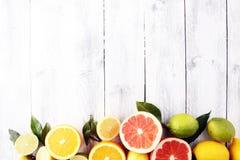 tła cytrus przygotowywający tekst Asortowana świeża cytrus owoc Cytryna, pomarańczowy wapno, grapefruitowy Zdjęcie Stock