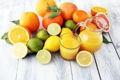 tła cytrus przygotowywający tekst Asortowana świeża cytrus owoc Cytryna, pomarańczowy wapno, grapefruitowy Obrazy Stock