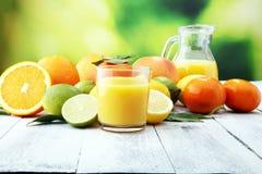 tła cytrus przygotowywający tekst Asortowana świeża cytrus owoc Cytryna, pomarańczowy wapno, grapefruitowy Zdjęcia Royalty Free