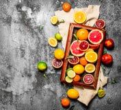 tła cytrus przygotowywający tekst Cytrus owoc w starej tacy Obraz Stock