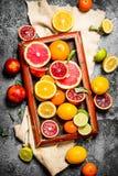 tła cytrus przygotowywający tekst Cytrus owoc w starej tacy Zdjęcia Stock