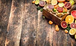 tła cytrus przygotowywający tekst Cytrus owoc w starym pudełku Obrazy Stock