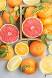 tła cytrus przygotowywający tekst Kolorowa świeża cytrus owoc na stole Tangeri Obrazy Royalty Free