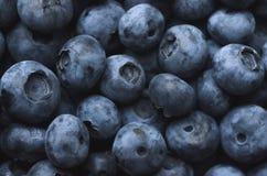 tła czarnej jagody karmowy zdrowy organicznie fotografia stock