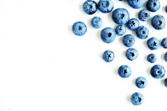 tła czarnej jagody karmowy zdrowy organicznie Dojrzałe i soczyste świeże ukradzione borówki zamykają up Odgórny widok lub mieszka Fotografia Royalty Free