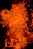 tła czarny płomieni rozwidlenia obraz royalty free
