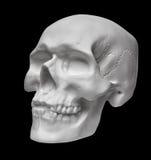 tła czerń zakończenia ludzka czaszka ludzki Zdjęcie Royalty Free