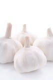 tła cztery świeży garlics biel Obrazy Stock