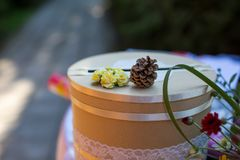tła dekoraci szczegółu eleganci kwiatu zaproszenia faborku ślub Obrazy Stock