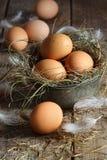 tła drewien jajek świeży drewno zdjęcia stock