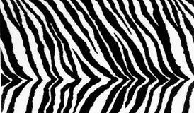 tła druku tekstylna tekstury zebra Obraz Royalty Free