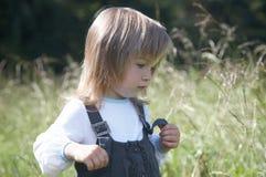 tła dziewczyny mała łąka Zdjęcia Royalty Free