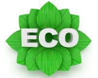 tła eco zieleni liść nad biały słowem Obraz Stock