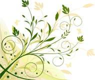 tła ekologii kwiecista ilustracja Zdjęcia Royalty Free