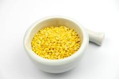 tła fasoli soya biel zdjęcie stock