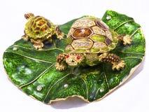 tła feng shui żółwie biały zdjęcie stock