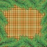 tła gałęziasty bożych narodzeń scottish drzewo Fotografia Royalty Free
