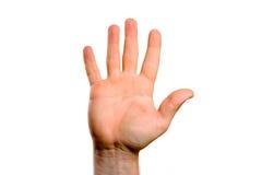 tła gesturings ręki odosobniony biel Zdjęcia Royalty Free