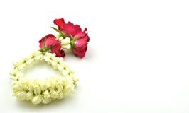 tła girlandy jaśminowy biel Fotografia Royalty Free