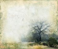 tła grunge drzewa Obraz Stock