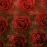 tła grunge róże Zdjęcia Royalty Free