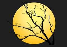 tła Halloween księżyc noc kolor żółty Zdjęcia Royalty Free