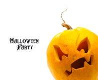 tła Halloween odosobniony dyniowy biel Zdjęcie Stock