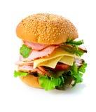 tła hamburgeru odosobniony biel Obraz Royalty Free