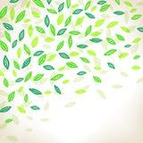 tła ilustraci liść wektor Zdjęcia Royalty Free