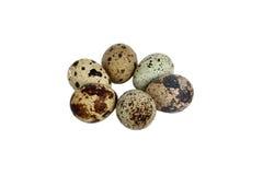 tła jajka odizolowywający nad przepiórki s biel Zdjęcie Royalty Free