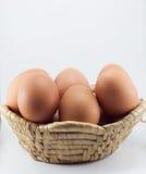 tła jajko odizolowywający skorupy biel yolk Zdjęcie Stock