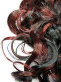tła kędzierzawego włosy głównej atrakci tekstura Fotografia Stock