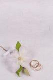 tła karcianego powitania strony szablonu ogólnoludzki sieci ślub Zdjęcia Royalty Free