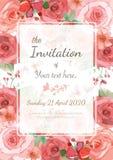 tła karciany rysunków zaproszenia wektoru ślubu biel Zdjęcia Royalty Free