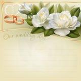 tła karciany rysunków zaproszenia wektoru ślubu biel Obrazy Royalty Free