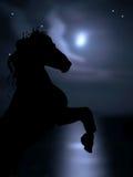 tła koński księżyc morze Zdjęcie Stock
